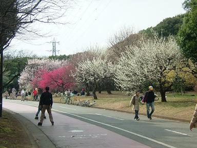駒沢.JPG
