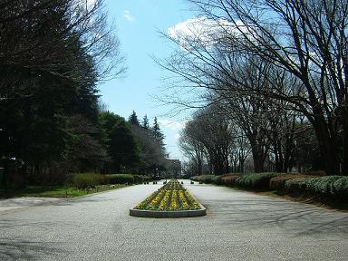 小金井公園.JPG