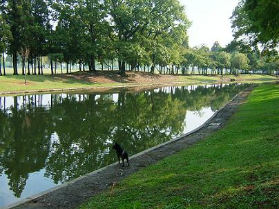 池のほとり.JPG